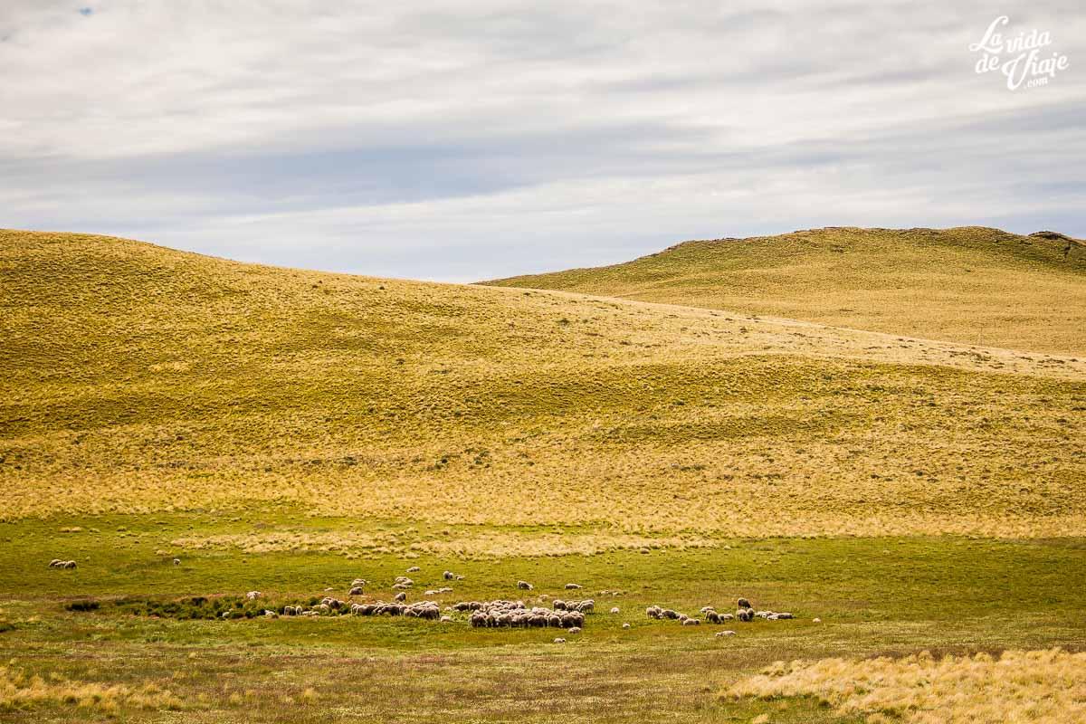 La Vida de Viaje - Sol, viento y lluvia en la patagonia