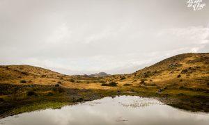 La Patagonia late