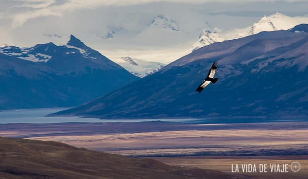 hasta luego patagonia-la vida de viaje (17 de 50)
