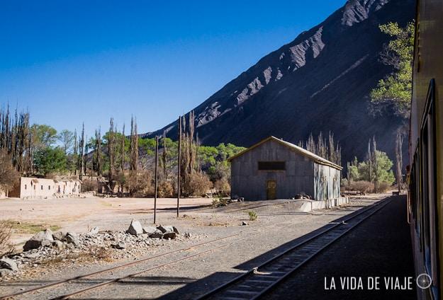 tren a las nubes-la vida de viaje (10 de 37)