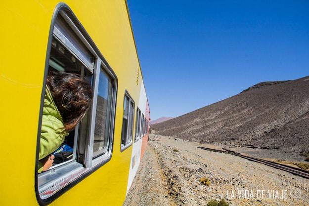 tren a las nubes-la vida de viaje (16 de 37)