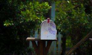 Día 11: Carta a mi vida pasada