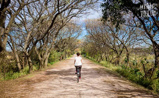 La Vida de Viaje-baires en bici-10