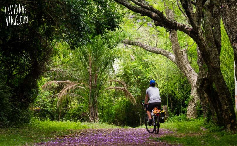 La Vida de Viaje-isla Martín García-12