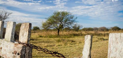La Vida de Viaje-de Entre Ríos a Corrientes-15