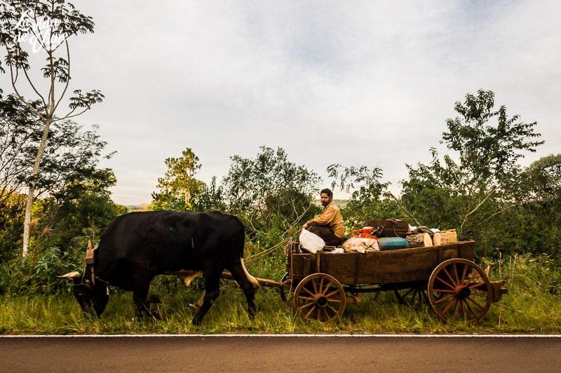 La Vida de Viaje-Misiones-Argentina-37