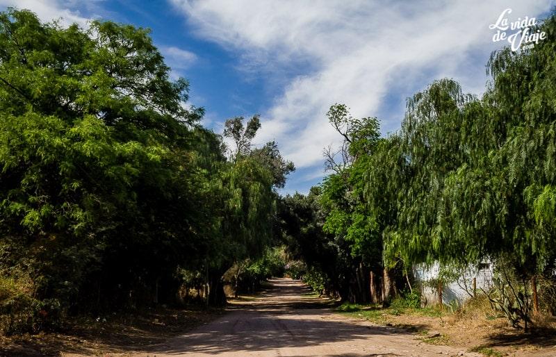 La Vida de Viaje-Córdoba-1-53