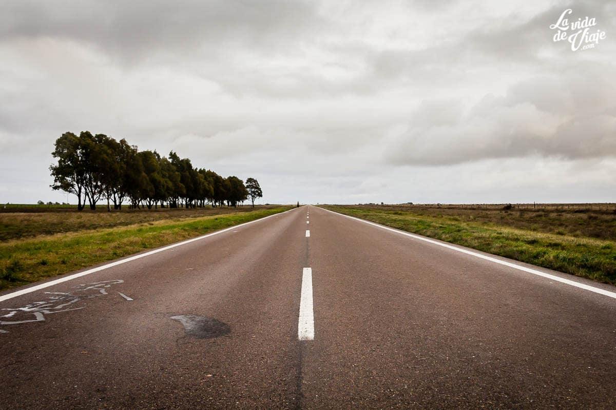 La ruta de las preguntas - La Vida de Viaje